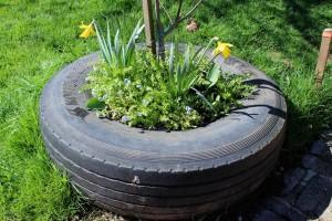 garden-for-health2